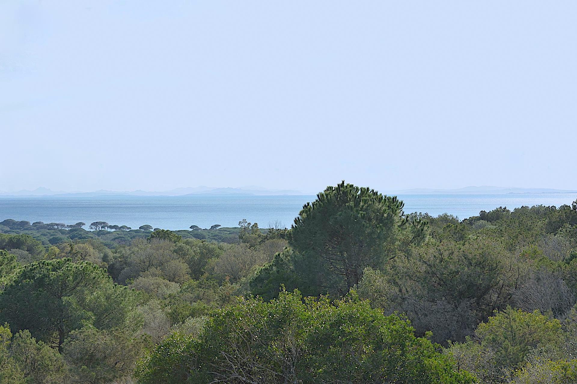 PALOMBAGGIA, A 1km. à pied de la plage principale: PROPRIÉTÉ comprenant 2 MAISONS VUE MER AVEC TRAVAUX. EXTENSION/SURÉLÉVATION POSSIBLE.